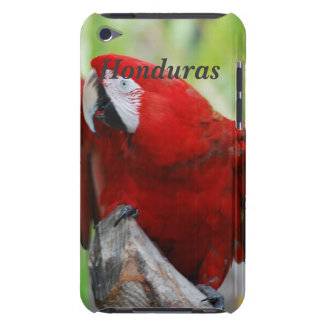 Macaws iPod Touch Cover
