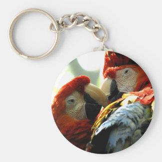 Macaws del amor llavero