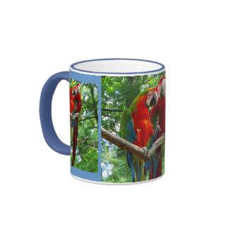 Macaws del canto taza grande