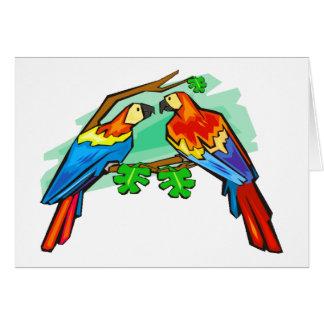 Macaws del escarlata tarjeta de felicitación