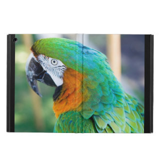 Macaws iPad Air Covers