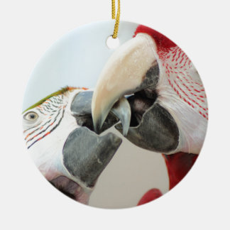 macaws kiss ceramic ornament