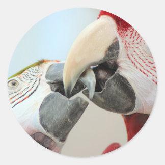 macaws kiss classic round sticker