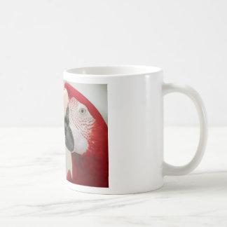 macaws kiss coffee mug