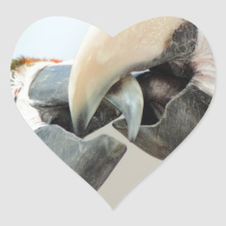 macaws kiss heart sticker