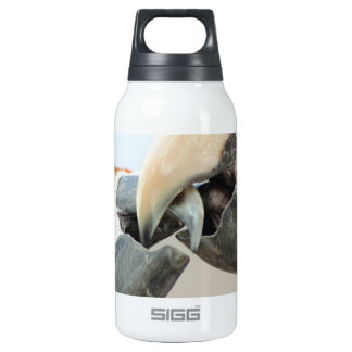 macaws kiss insulated water bottle