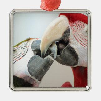 macaws kiss metal ornament