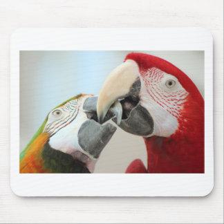macaws kiss mouse pad