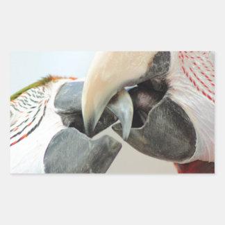 macaws kiss rectangular sticker