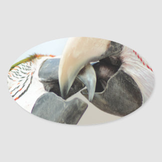 macaws kiss sticker