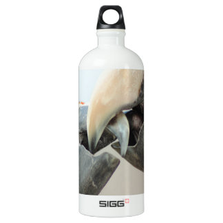 macaws kiss water bottle
