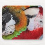 macaws mouse mat