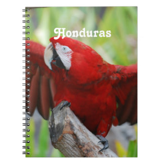 Macaws Notebooks