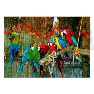 Macaws on Parade Greeting Card