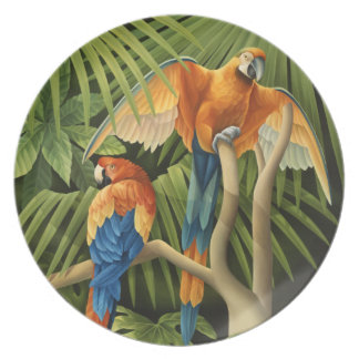 Macaws Plate