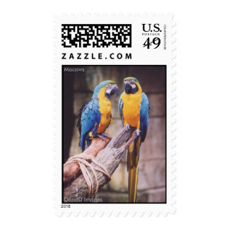 Macaws Postage