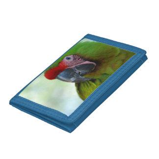 Macaws Wallets