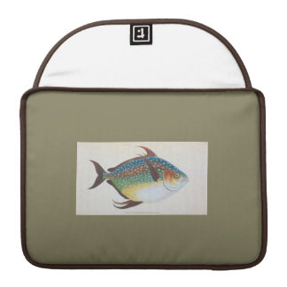 Macbook Case - Mackeral - Conservative