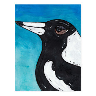 Macca the Magpie Postcard