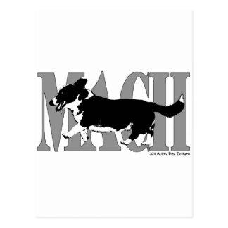 MACH Cardie Postcard
