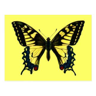 Machaon de Papilio Tarjetas Postales