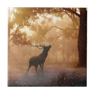 Macho en bosque místico azulejo cuadrado pequeño