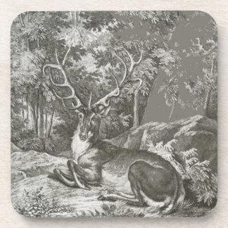 Macho en el bosque posavaso