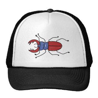 macho-escarabajo gorras de camionero