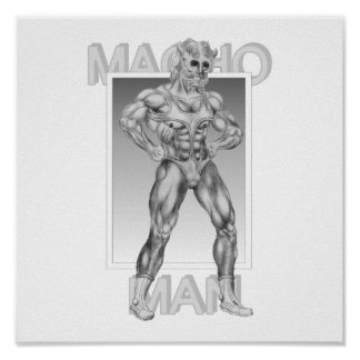 Macho Man Posters