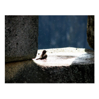 Machu Picchu, Peru, birdbath in stone window Postcard