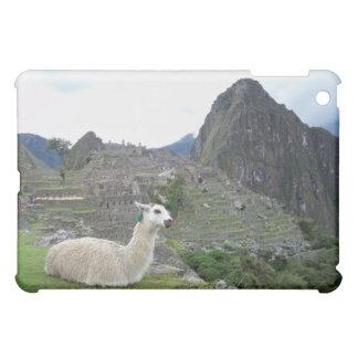 Machu Picchu, Peru  Case iPad Mini Cases