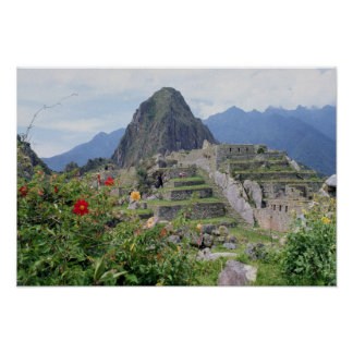 Machu Picchu, Perú Póster