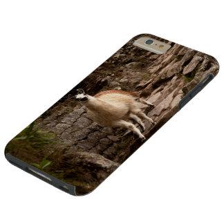 Machu Picchu - Peruvian Lama Tough iPhone 6 Plus Case