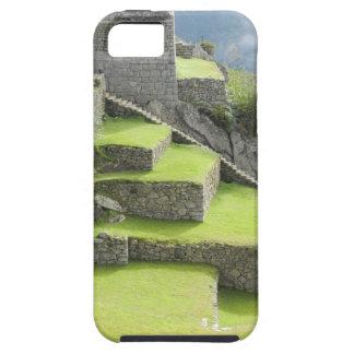 Machu Picchu Steps iPhone SE/5/5s Case