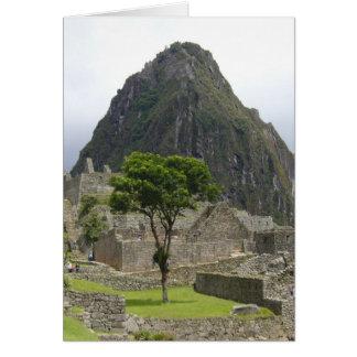 machu picchu tree card
