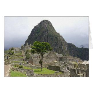 machu tree card