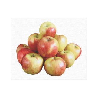 Macintosh Apples Canvas Print