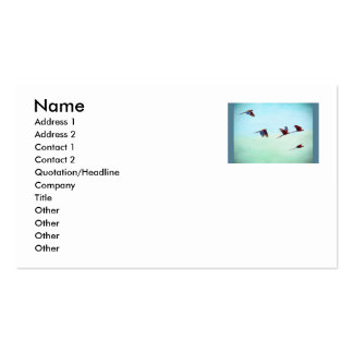 Mackaws Flying Double-Sided Standard Business Cards (Pack Of 100)