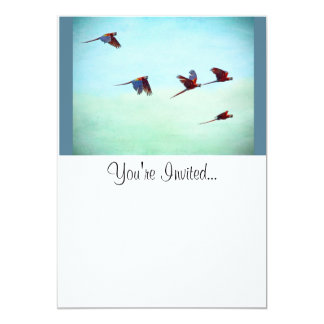 Mackaws Flying 5x7 Paper Invitation Card