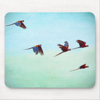 Mackaws Flying Mouse Pad