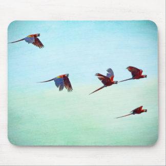 Mackaws Flying Mousepads