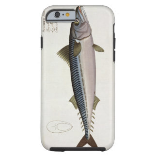 Mackerel (Scomber Scomber) plate LIV from 'Ichthyo Tough iPhone 6 Case