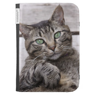 Mackerel Tabby Cat Case Cases For The Kindle