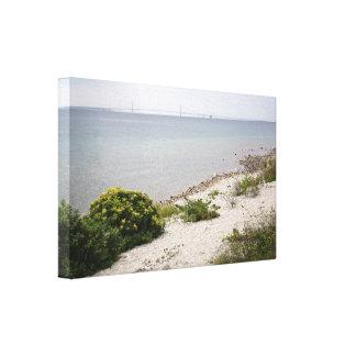 Mackinac Island and Bridge Canvas Print