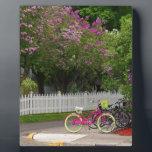 "Mackinac Main Street Plaque<br><div class=""desc"">street,  mackinac,  island,  michigan,  bike,  flowers,  michiale,  schneider,  photography</div>"