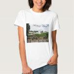 Mackinac T Shirts