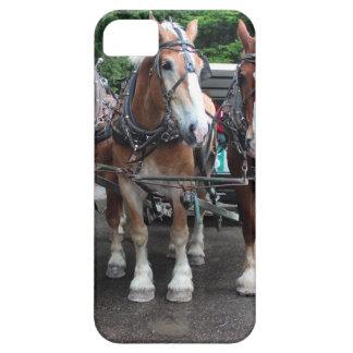 Mackinac Team I iPhone SE/5/5s Case