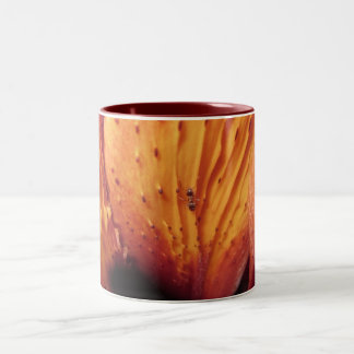 Macro Ant on a Lily Flower Two-Tone Coffee Mug