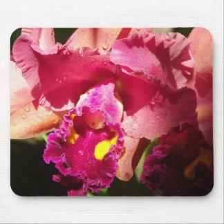 Macro Beardless Iris Mouse Pad