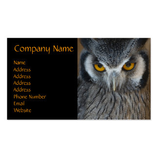 Macro Black and White Owl Business Card